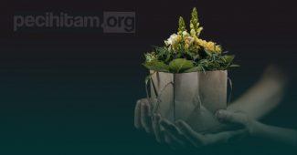 Bagaimana Perbedaan Sedekah, Hadiah dan Hibah Menurut Ajaran Islam