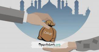Kategori Zakat dalam Islam, Apa Sajakah itu? Berikut Rinciannya