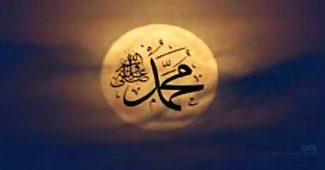tanda kenabian di punggung nabi muhammad